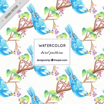 Waterverf het blauwe vogel op een lidmaat patroon