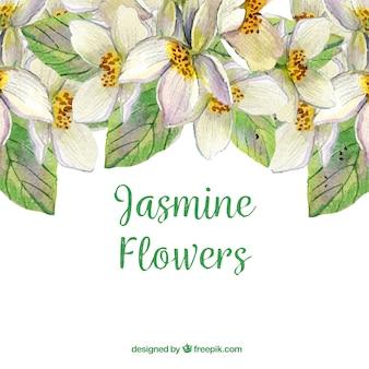 Waterverf jasmijn achtergrond met artisitische stijl