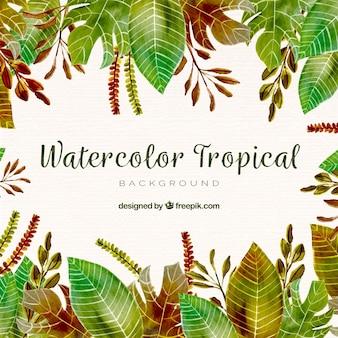 Waterverf tropische achtergrond met elegante stijl