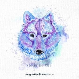 Waterverf wolf en roofdier