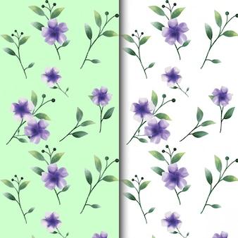Waterverfbloem en bladpatronen op groene en witte kleuren