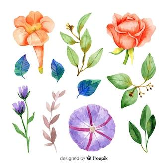 Waterverfbloemen en bladeren met bleke kleuren