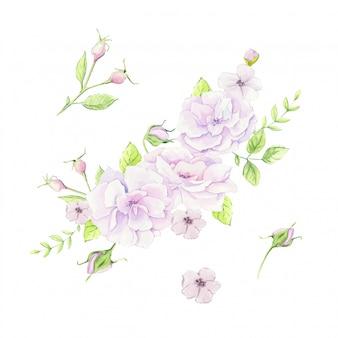 Waterverfboeket van de illustratie van rozebottelbloemen