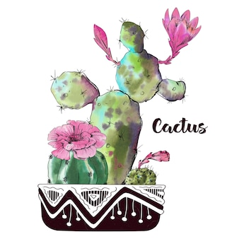 Waterverfcactus op witte achtergrond wordt geïsoleerd die