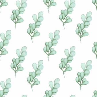 Waterverfpatroon met eucalyptustakken op een witte achtergrond