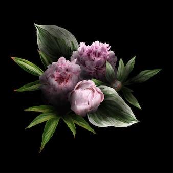 Weelderig bloemenboeket in rustige, zwarte achtergrond, roze pioenen en bladeren, hand getrokken wtercolor illustratie.