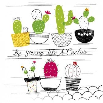 Wees sterk als een cactus