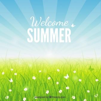 Welkom zomer achtergrond