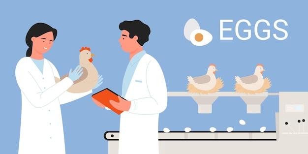 Werknemers in de eierproductie van de pluimvee-industrie staan in de buurt van de transportband met kippen