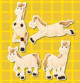 Whie paard in vier verschillende posities