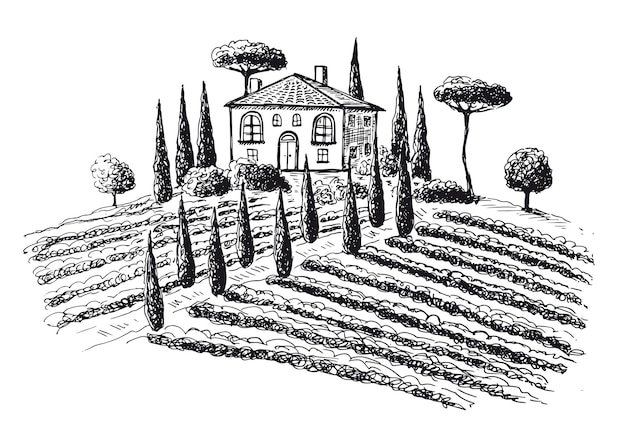 Wijngaarden vine plantage landschap handgetekende illustraties