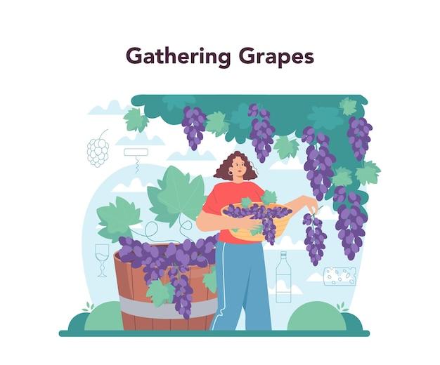 Wijnmaker concept druivenwijn in een houten vat fles rode wijn