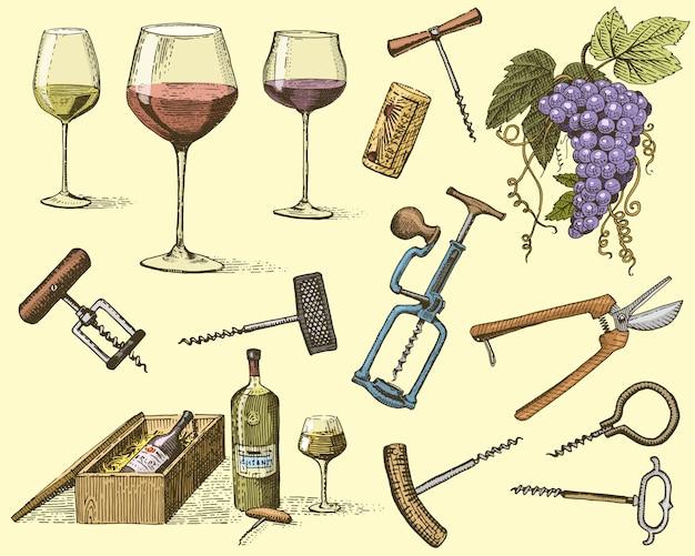 Wijnoogstproducten, pers, druiven, wijngaarden, kurkentrekkers, glazen flessen in vintage stijl, gegraveerde handgetekende