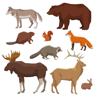 Wild dier geschilderd icon set