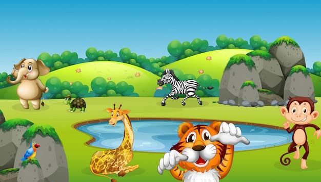 Wild dier in de natuur