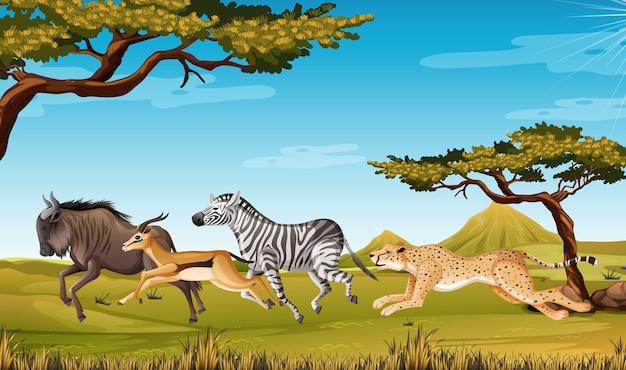 Wild dier met savanne