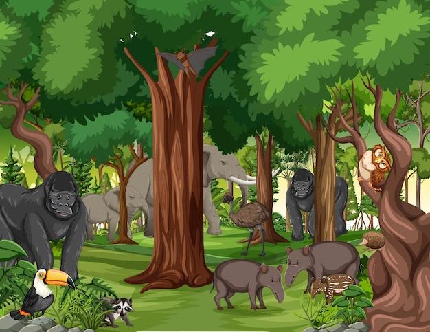 Wild dierlijk stripfiguur in de bosscène