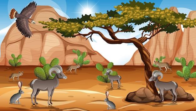 Wild woestijnlandschap bij dagtafereel
