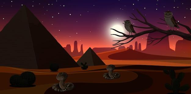 Wild woestijnlandschap bij nachtscène