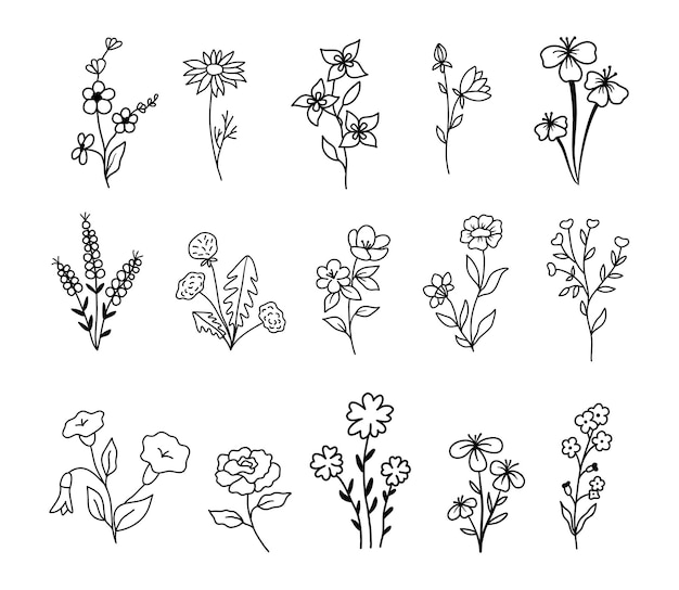Wilde bloemen en bloemen in kaderstijl