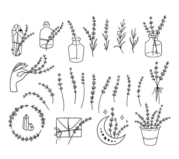 Wilde bloemen lavendel zwart-wit clipart bundel lijn lavendel bloem set vectorillustratie