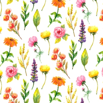 Wilde bloemen, waterverf, papaver, korenbloem, kamille, patroon