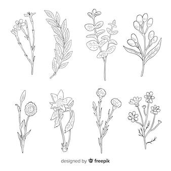 Wilde bloemencollectie met stengels