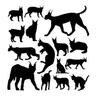 Wilde caracal katten dierlijke silhouetten