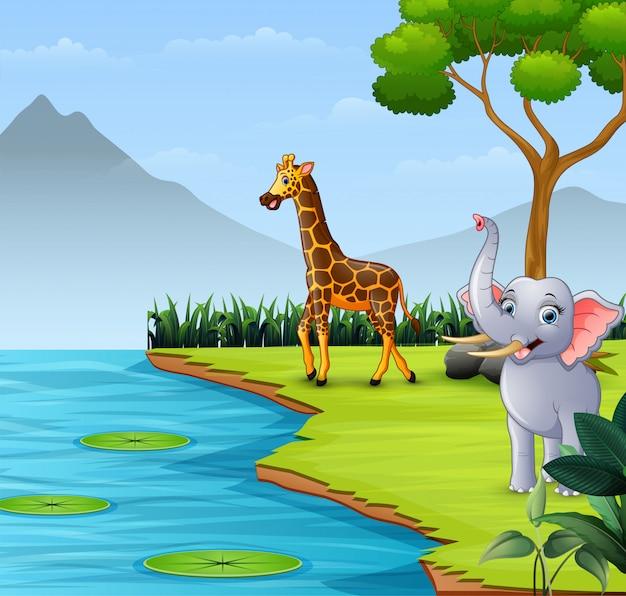 Wilde dieren die bij de rivier wonen