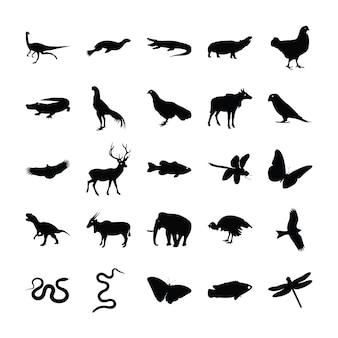 Wilde dieren glyph-pakket