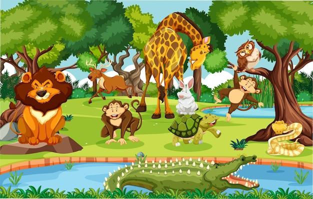 Wilde dieren in de jungle