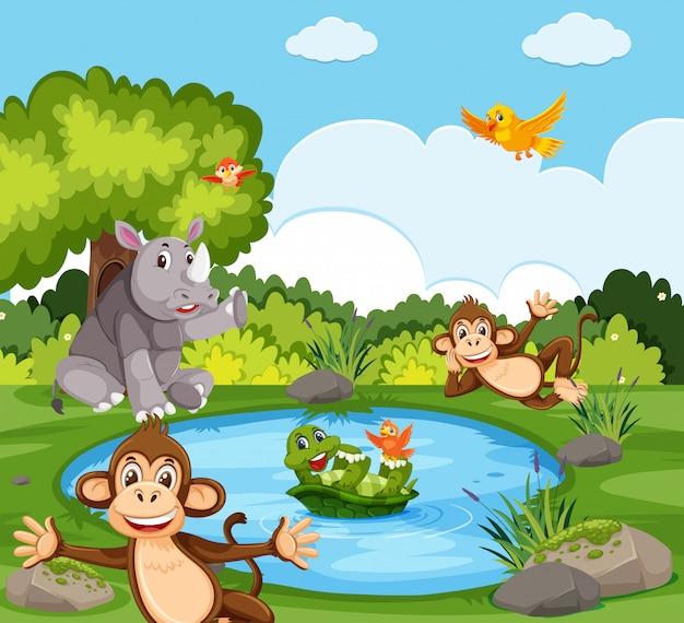 Wilde dieren in de natuur