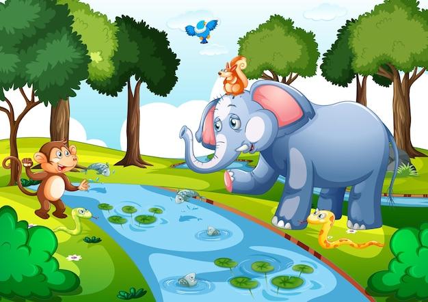 Wilde dieren in het bos bij de scène van de dagtijd