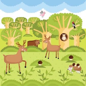 Wilde dieren in het bos.