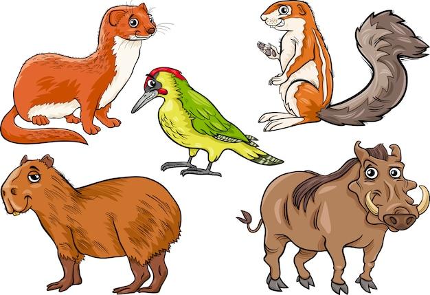 Wilde dieren instellen cartoon afbeelding