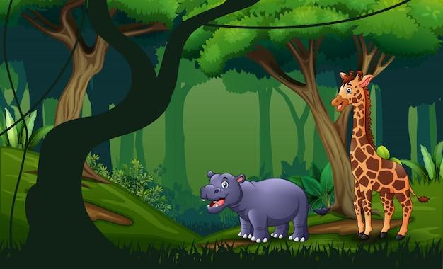 Wilde dieren leven in het bos
