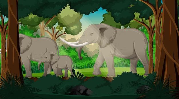 Wilde dieren op de achtergrond van het boslandschap