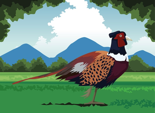 Wilde fazantvogelboerderij in de landschapsscène