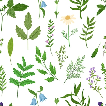 Wilde kruiden naadloze patroon. cartoon bladeren, brunches, bloemen, takje. hand getekende illustratie.