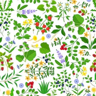 Wilde kruidenbloemen en bessen naadloos patroon.