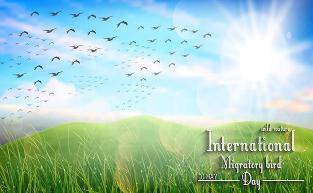 Wilde natuur met groen gras en vliegende vogels