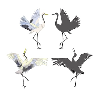 Wilde vogels tijdens de vlucht. gegraveerde schetshand getekend in vintage stijl.