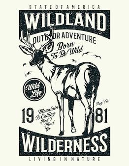 Wildernis