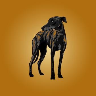 Windhond honden illustratie