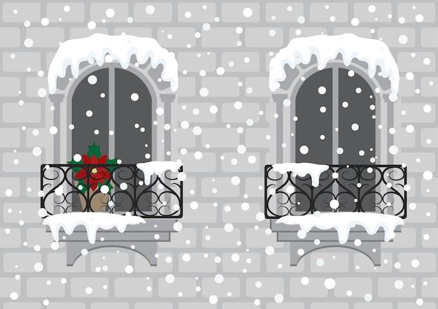 Windows met rode kerstbloem