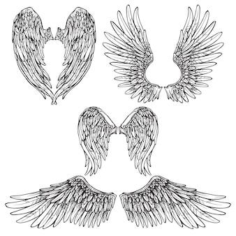 Wings sketch set Gratis Vector
