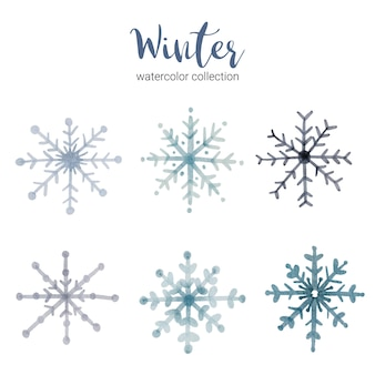 Winter aquarel collectie met takken die koel, winter aquarel symboliseren.