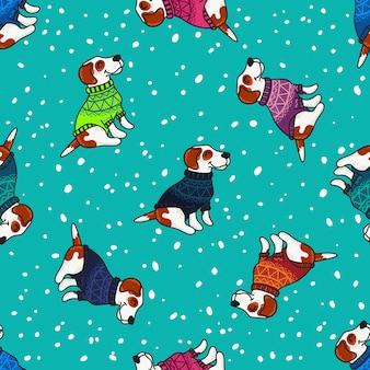 Winter begroeting met honden in kleurrijke truien