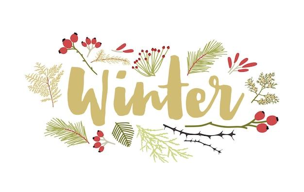 Winter belettering handgeschreven met cursief kalligrafisch lettertype en versierd met naaldboomtakken en bessen. decoratieve seizoensgebonden compositie. plat kleurrijke natuurlijke vectorillustratie.