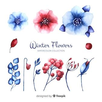 Winter bloemen collectie